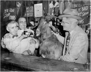 Billy Goat Sianis y su cabra Murphy